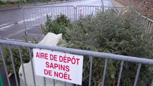 sapin-noel-aire-depot-1
